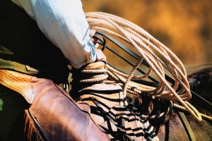 cowboy ready to rope