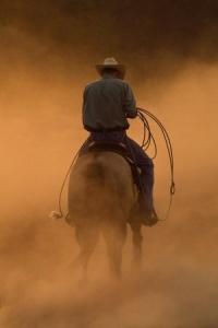 cowboy dust