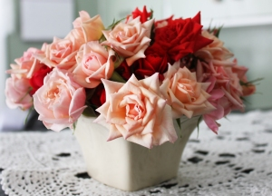 Bowl of mini roses