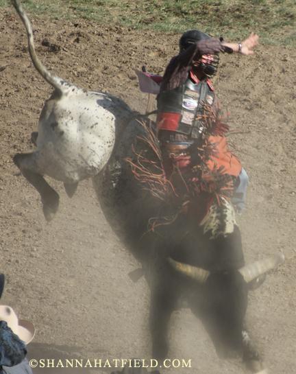 bullrider 1
