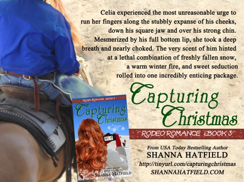 Capturing Christmas 1