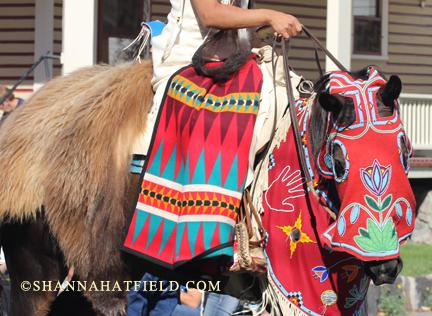 indian pony 2