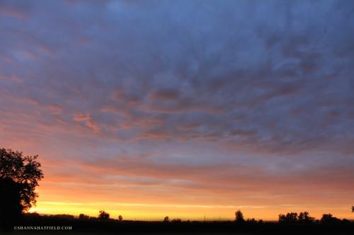 Sunset 09-14