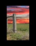 Fencepost-Sunset