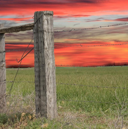 Square 2 fence post with sunset