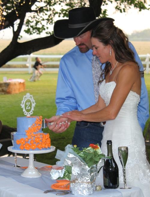 Cake Cut 1