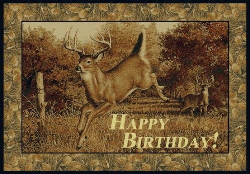 Happy Birthday! deer