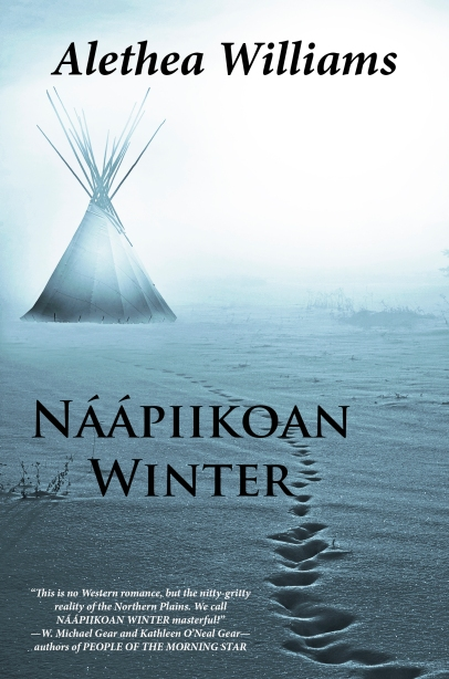 Naapiikoan Winter Cover