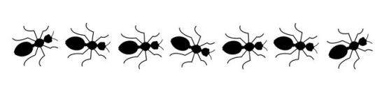 line-of-ants-clipart-1