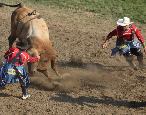 a bullfighters.jpg