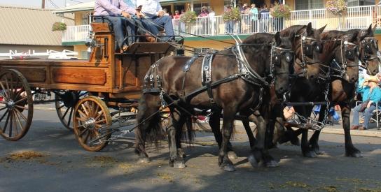 a wagon 1