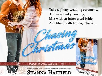 Chasing Christmas 3
