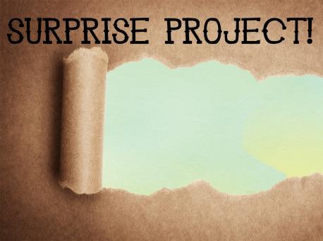 Surprise Project 1
