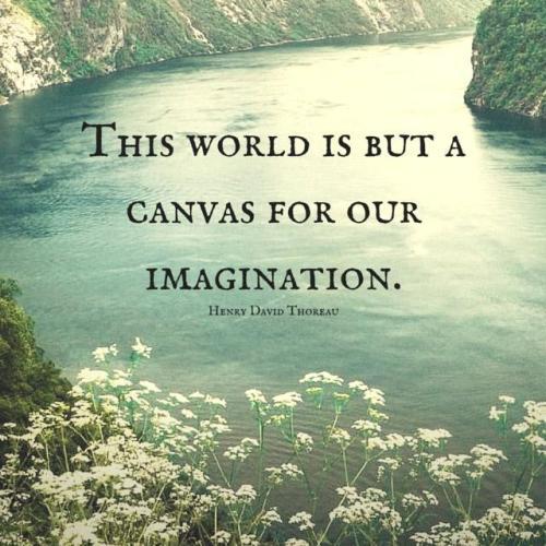 z imagination 2