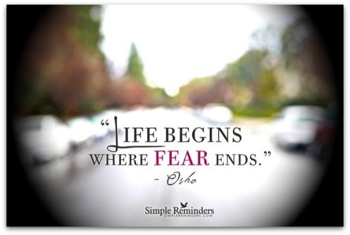 zz fearless 2