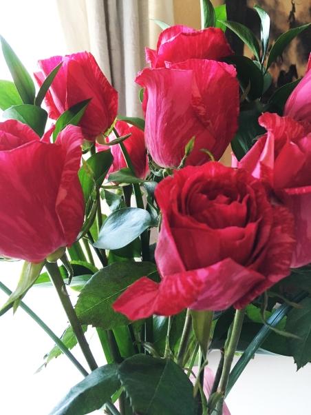 roses CC