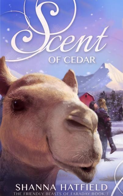 Scent of Cedar (2)